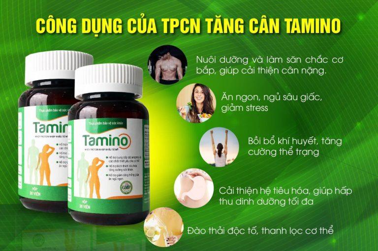 Cong-dung-tamino-2-768x510